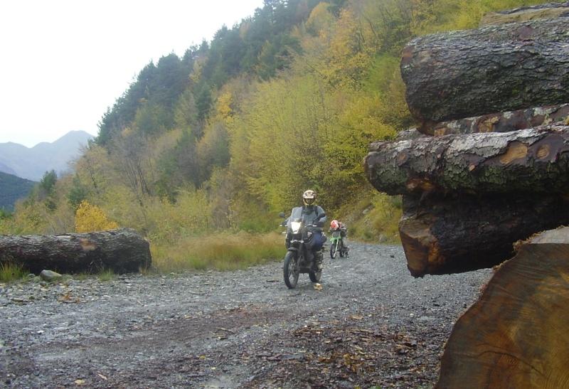 Vos plus belles photos de moto - Page 2 P2280210