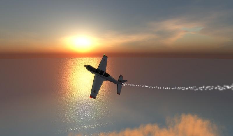 Aerobatics !!! Snapsh31