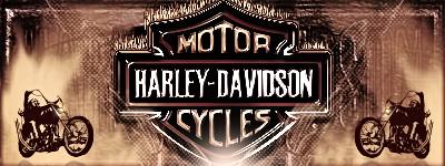 FDLS #10 (29-11-10 A 03-12-10) Inscripciones Harley10