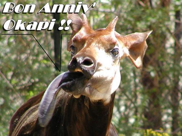 Joyeux anniversaire Okapi07![Poisson d'avril 2011][Village TSGE] Okapi_10