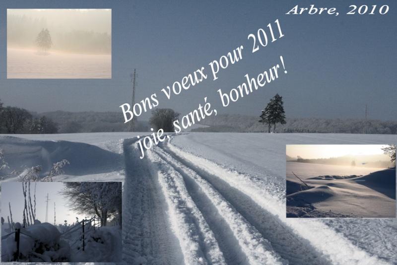 Bonnes Fêtes et Meilleurs Vœux pour 2011 - Page 6 0a212