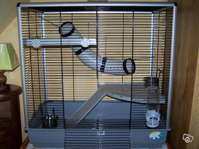 Cage vendue, à clôturer merci ;) Jennyk10