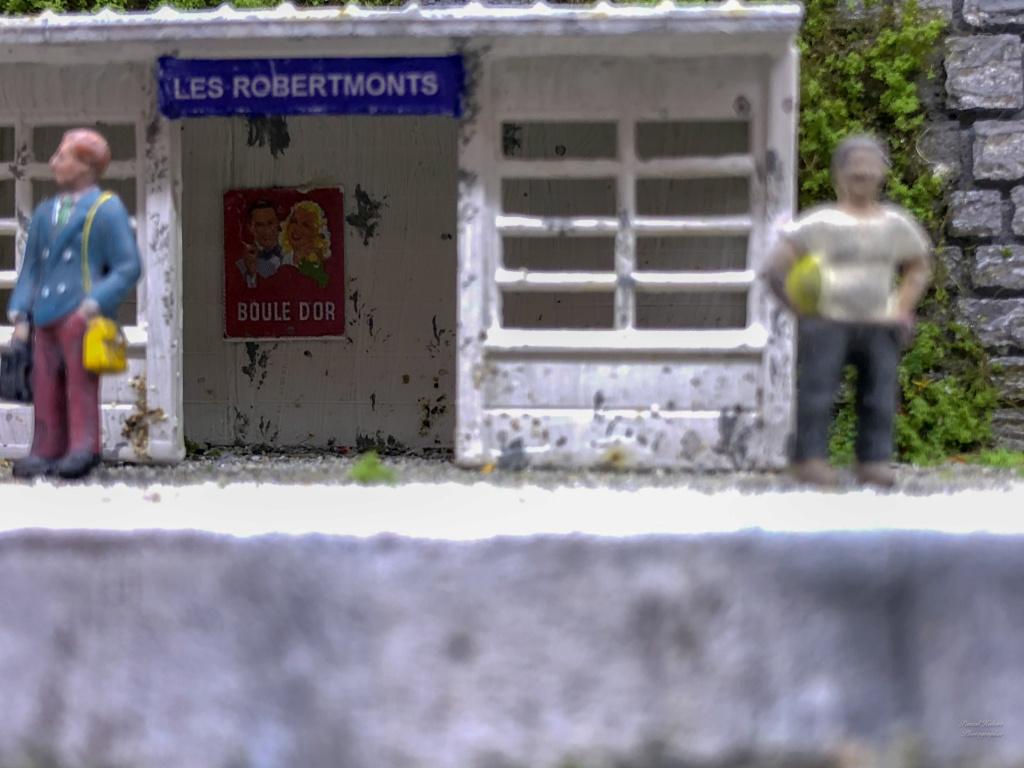Les Robertmonts, Rue des Thermes - Page 14 Dzotai10