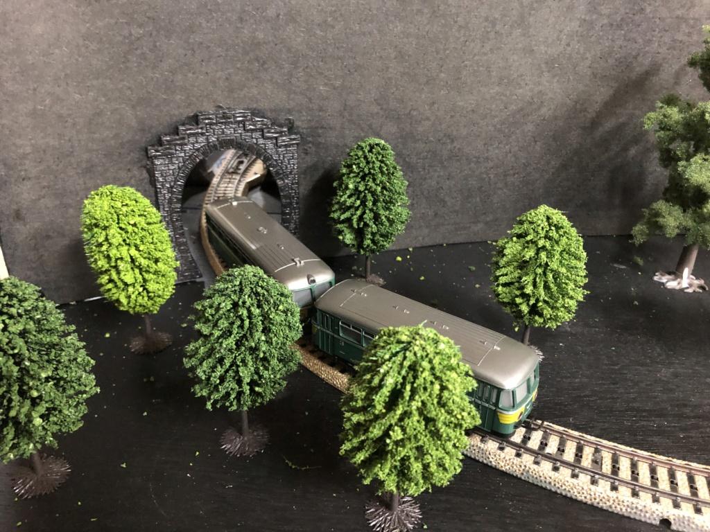 """Réseau type """"Just Train"""" pour vitrine Img_3518"""