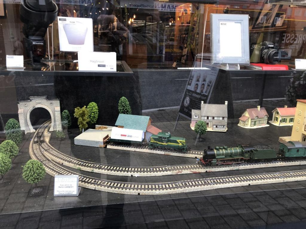 """Réseau type """"Just Train"""" pour vitrine Img_3521"""