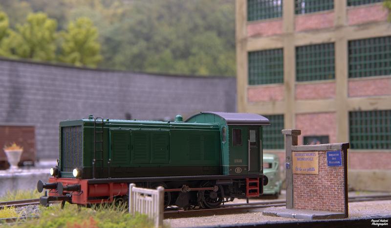 Diesel SNCB Série 231 Brawa Szorie15