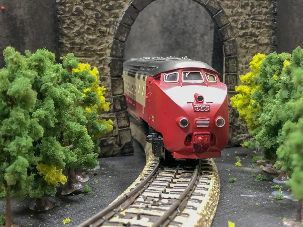 """Réseau type """"Just Train"""" pour vitrine - Page 2 Tee_3017"""