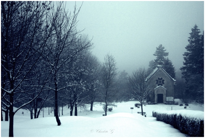 Miroir, Neige en hiver, Perdu dans la brume, Pêche au couchant, A la surface /5 photos Img_5410