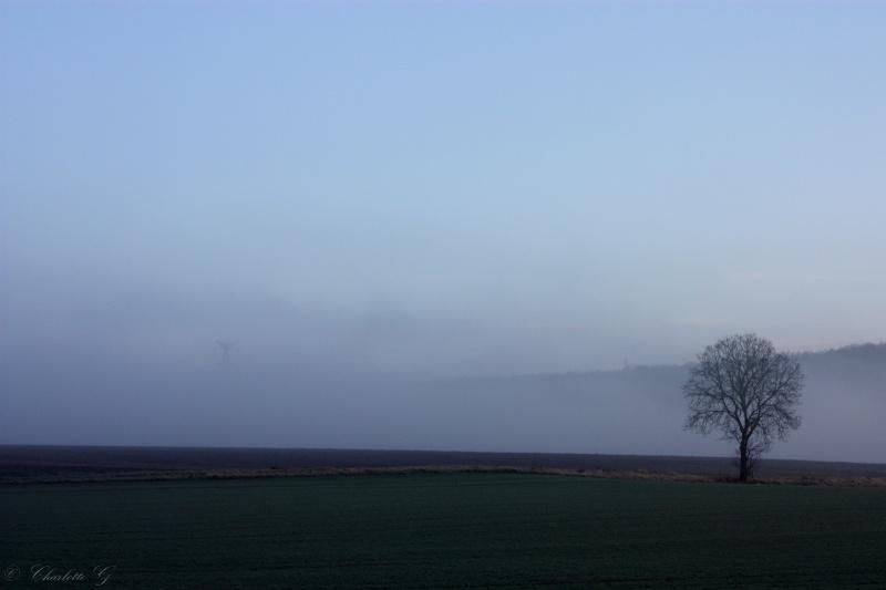 Miroir, Neige en hiver, Perdu dans la brume, Pêche au couchant, A la surface /5 photos Img_6110