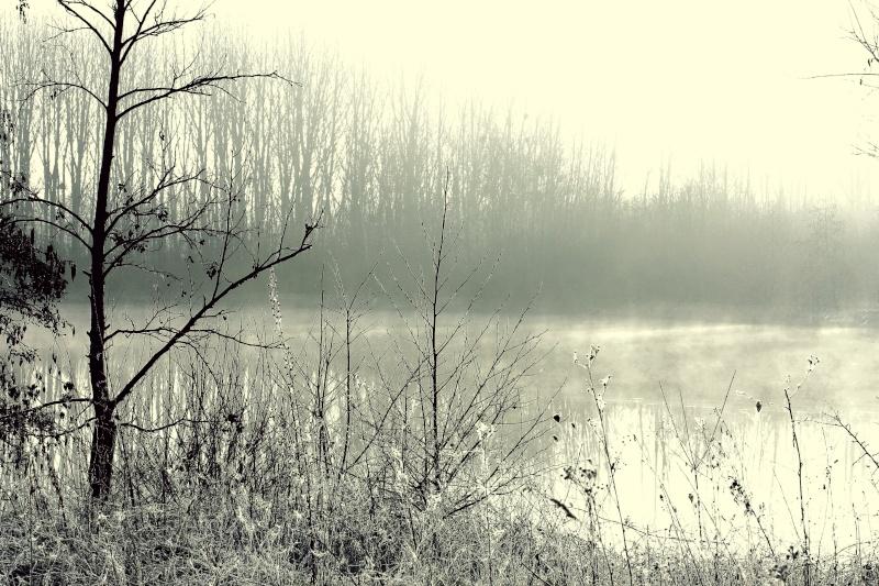 Miroir, Neige en hiver, Perdu dans la brume, Pêche au couchant, A la surface /5 photos Img_6111