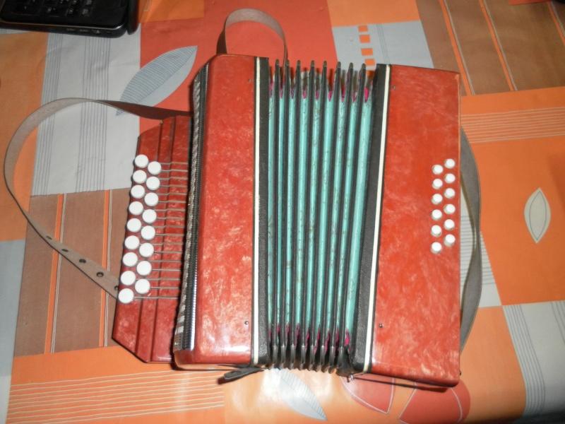 vrai ou faux accordéon? Sam_0211