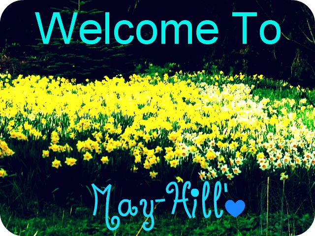 Adventures in May-Hill | Book 1 | The Adventure Begins Welcom10