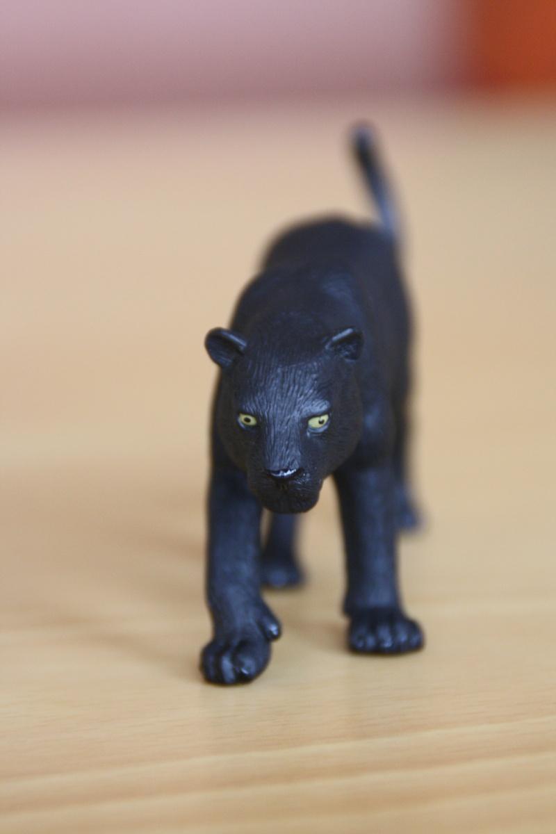 Mojo Bison and Black Panther Imagen41