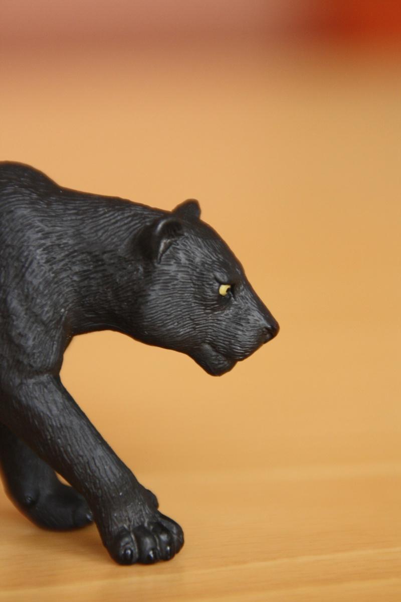Mojo Bison and Black Panther Imagen42