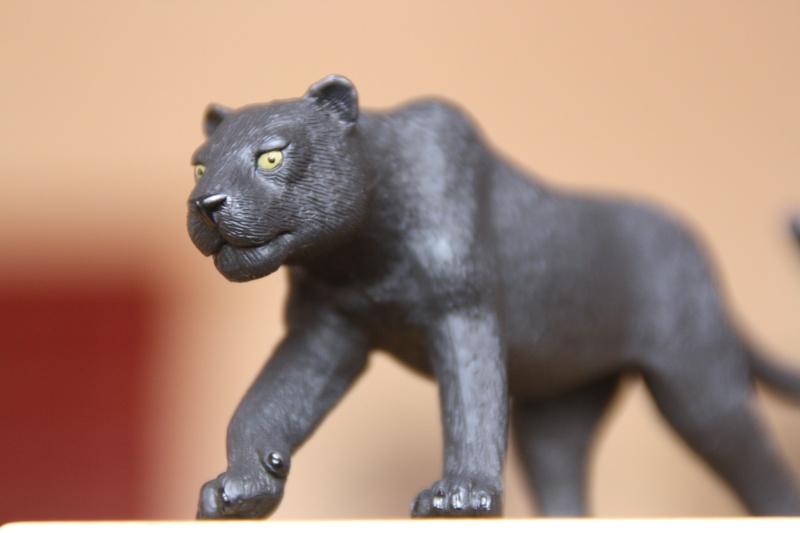 Mojo Bison and Black Panther Imagen43