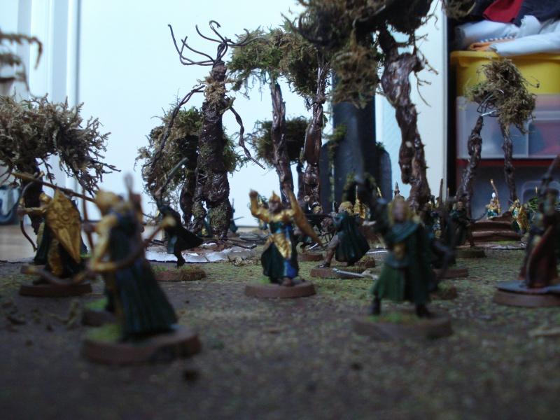 armée des bois Dsc03826