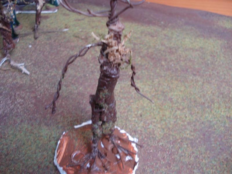 armée des bois Dsc03827