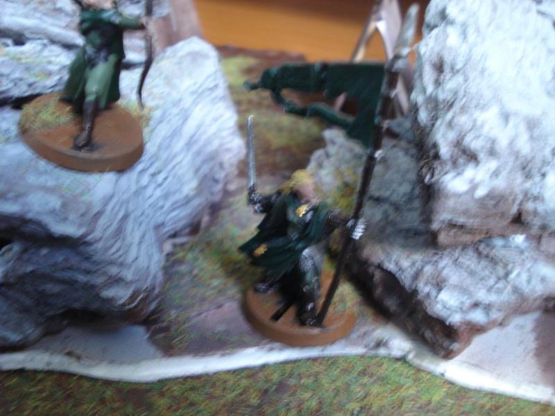 armée des bois Dsc03829