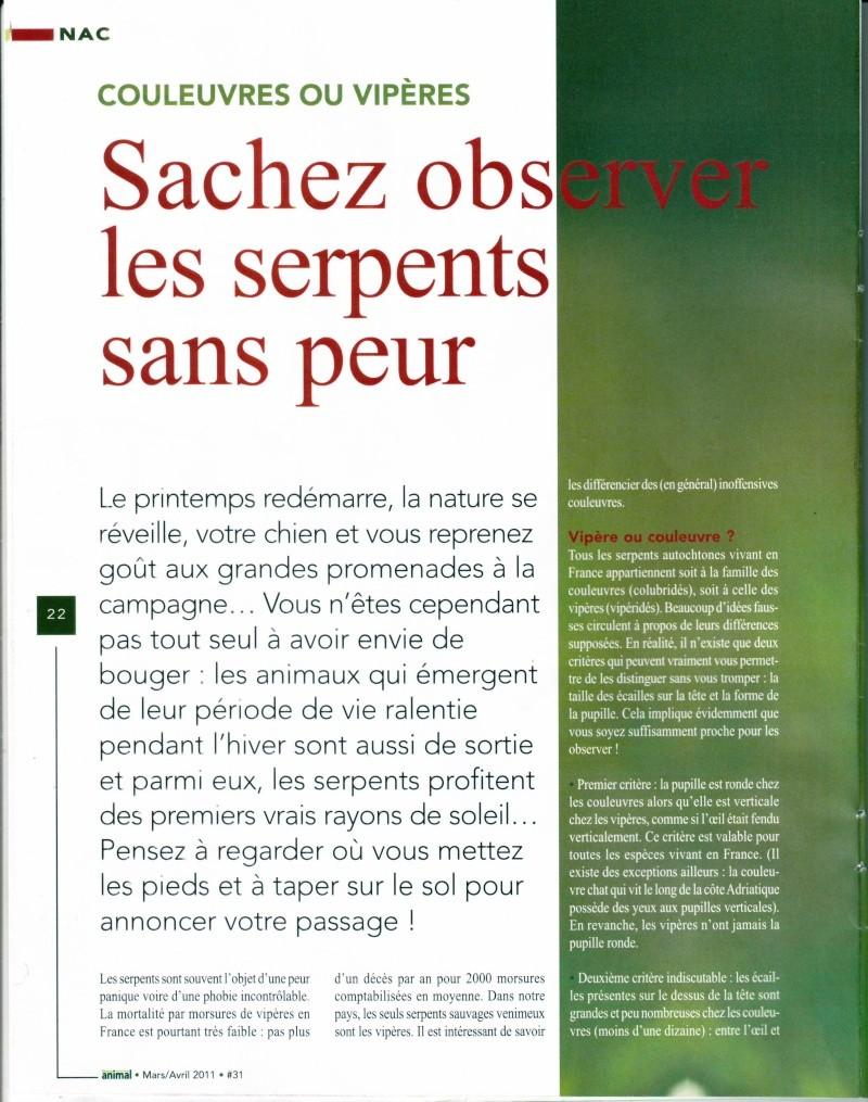 Morsure de vipère Page_110