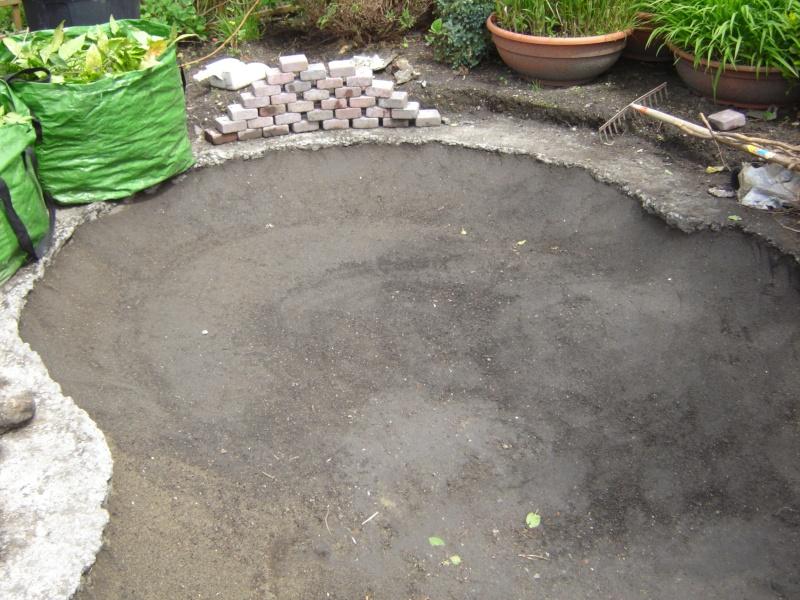 contruire un bassin  jardin Dsc03812