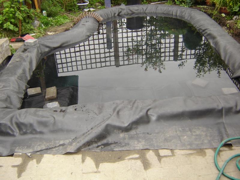 contruire un bassin  jardin Dsc04010