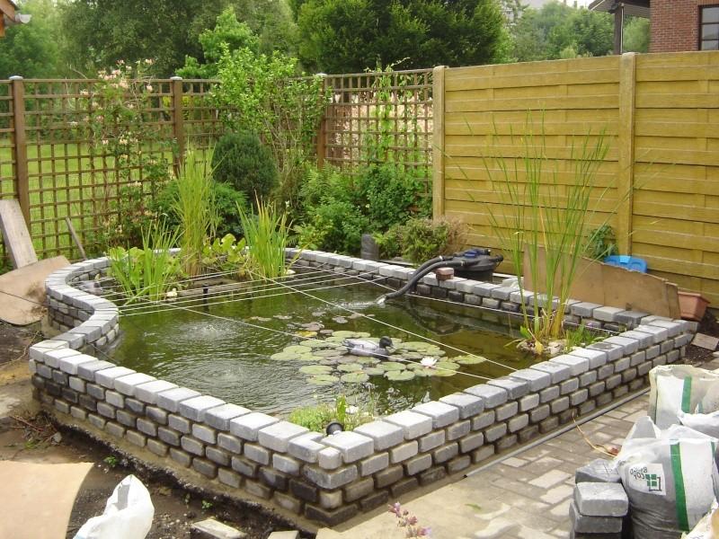 contruire un bassin  jardin Dsc05310