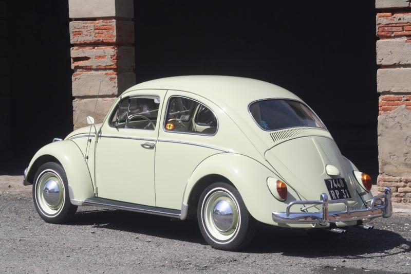 1962 Beryl Green 01510