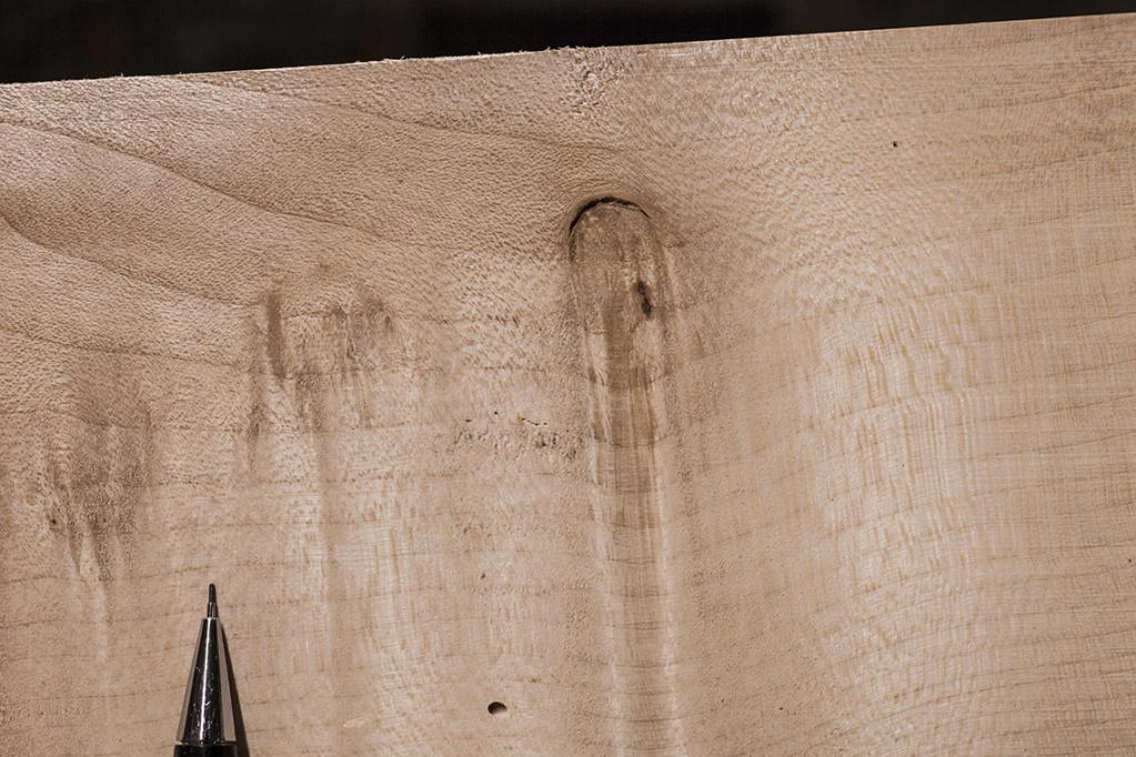 [Encore une demande du style...] Mais quel est ce bois? Sycomo13