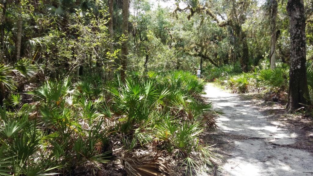 MK un peu, UOR beaucoup, la Floride passionnément!   Tel_cs14