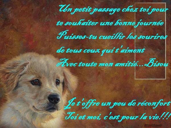 Mon chien et l'oraison. Fb676010