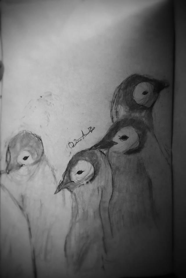 Penguin Sketch 15145510