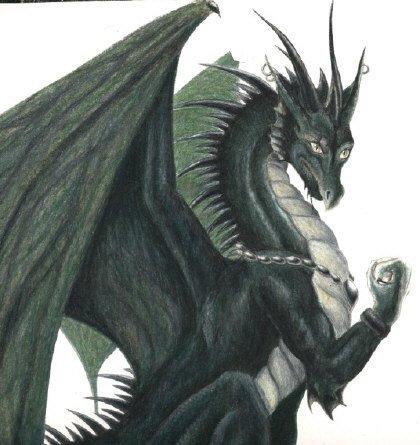 The first random dragon picture. Dragon14