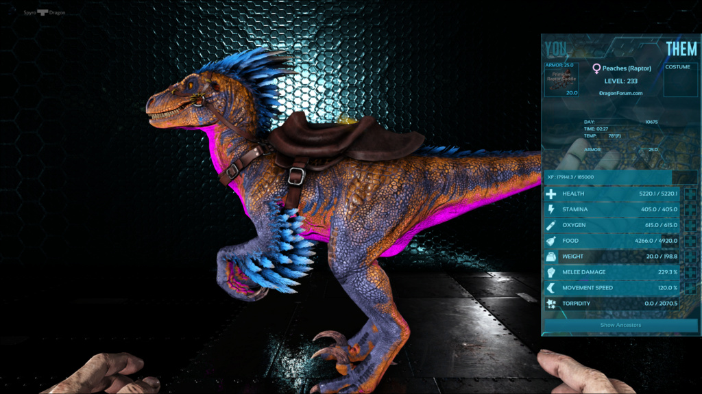 Raptors Untitl40