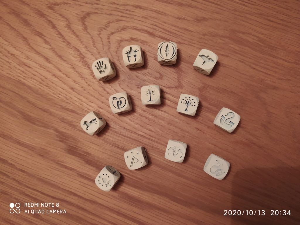 Dés personnalisés SDA - Hobbit - tables de pouvoir Img_2073