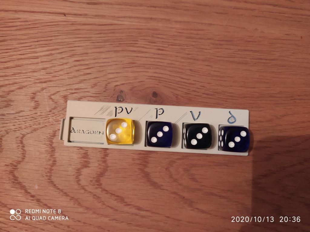 Dés personnalisés SDA - Hobbit - tables de pouvoir Img_2076