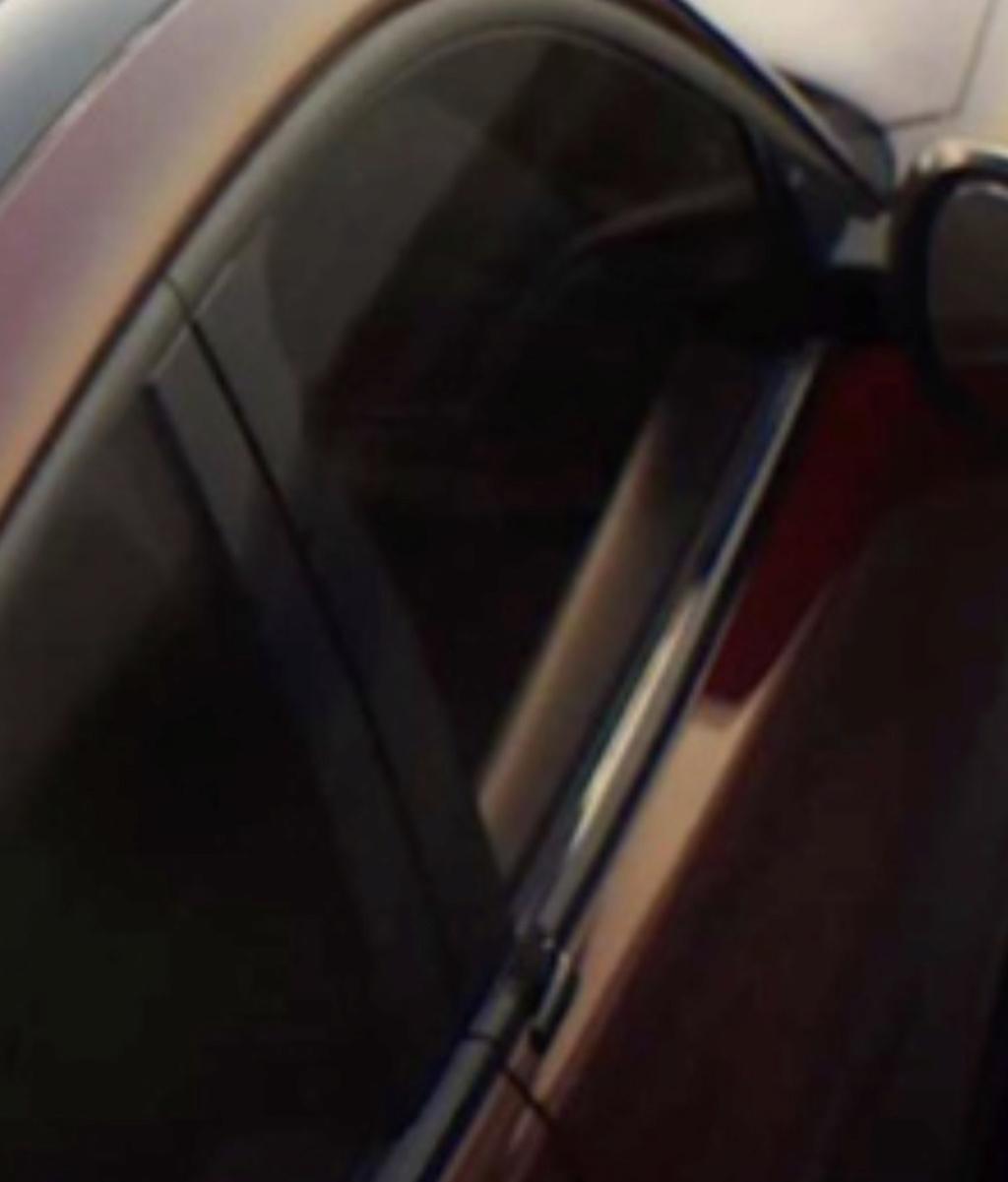 2020 - [Ford] Mustang Mach-E - Page 3 C4b3da10