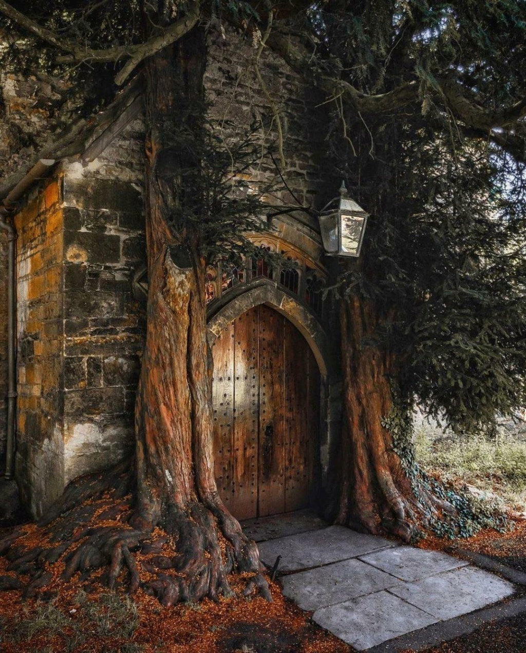 Pics of places that look like places from the films, or are just nice. [3] - Page 32 St_edw10