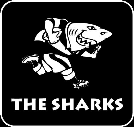 Cell C Sharks v British & Irish Lions, 7 July  - Page 4 Sharks10