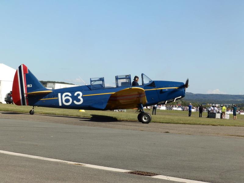 montgolfières P9150214