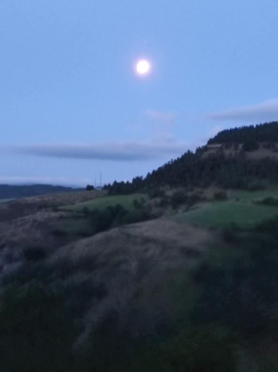 Pleine lune du 24 juillet - Page 2 Img_2062