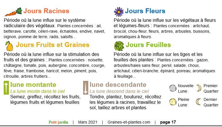 Vos plantes, fleurs, jardin !  - Page 27 J10