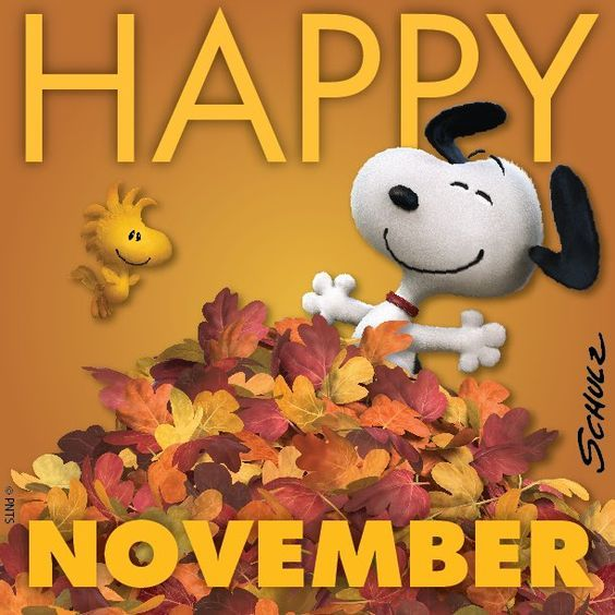 Aspects du mois de Novembre Nov10