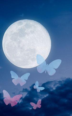 Pleine lune du 24 Juin ! Pap12