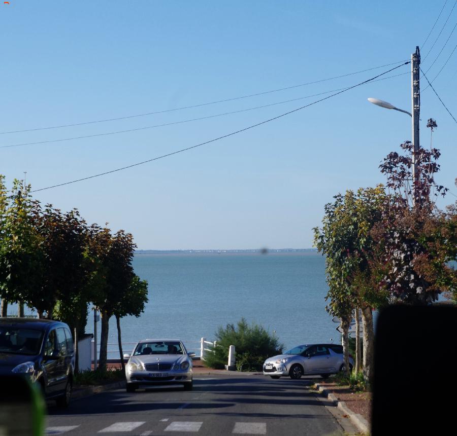 Fouras, la marée, les animaux et R'Bus Imgp8114