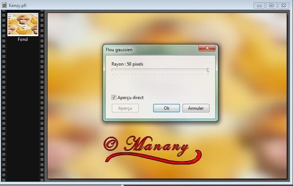 N°16 Manany - Tutorial Kenzy 310