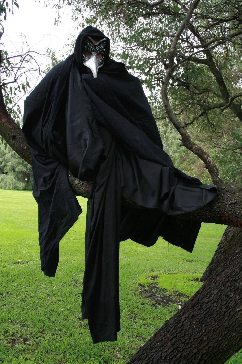 The raven king Crow_b10
