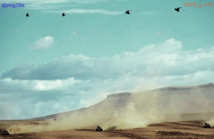 القوات البرية الجزائرية  - صفحة 51 Ayao10