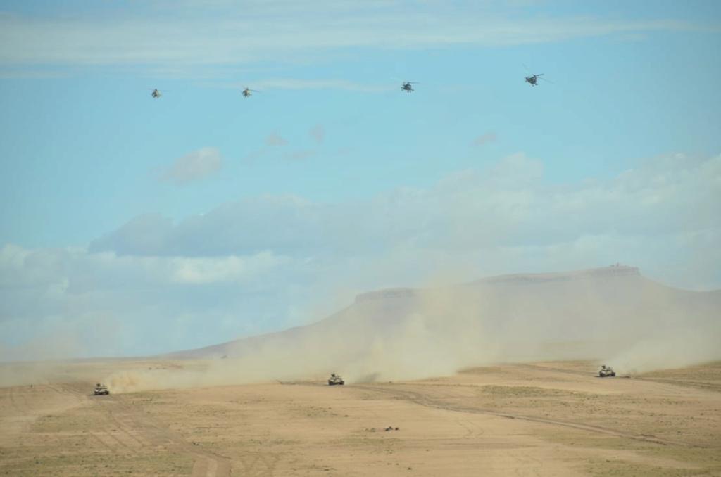 القوات البرية الجزائرية  - صفحة 51 Ayao_c10