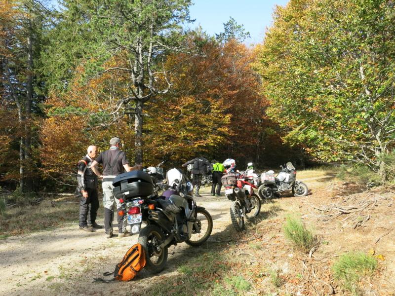 Rando Soft de l'Aigoual - Gard/Lozère - samedi 20 octobre - Page 2 Img_6914