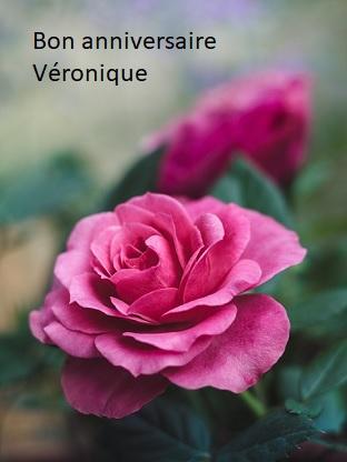 Aujourd Hui C Est L Anniversaire De Veronique1